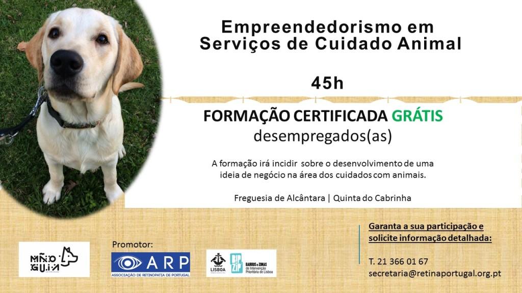 Empreendedorismo em serviços de cuidado Animal