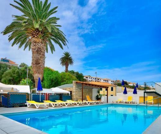 Vista da piscina retangular do hotel com palmeira grande e espreguiçadeiras