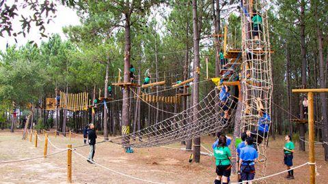 Pessoas a fazer arborismo num pinhal repleto de desafios com monitores a vigiar